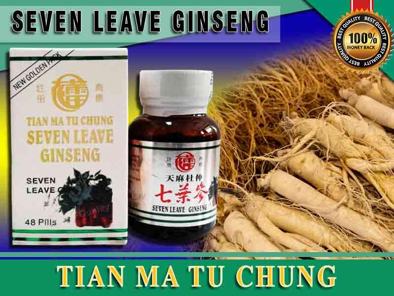 Cara Minum Seven Leave Ginseng Yang Benar