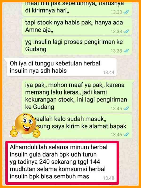Review Teh Celup Daun Insulin Yakon